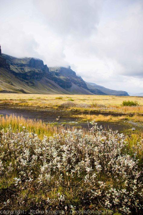 IJsland - Iceland 87