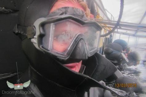 Vrijwilligerswerk Zuid Afrika - Volunteer South Africa - Kaapstad - Shark cage diving-10