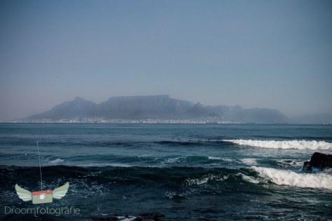Vrijwilligerswerk Zuid Afrika - Volunteer South Africa - Kaapstad - Robben Eiland-4
